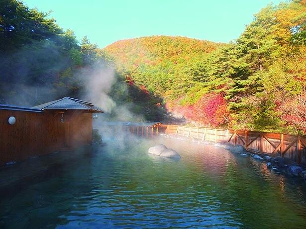 【画像】ビッグな露天風呂でダイナミックな紅葉の景色を満喫