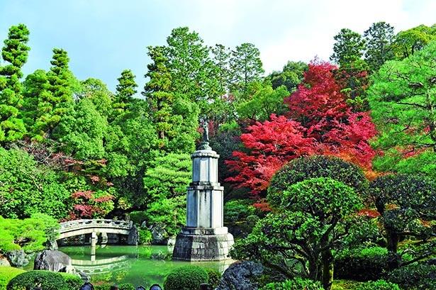 浄土宗の総本山の名庭に立つ聖観音像と真紅の木々が共演