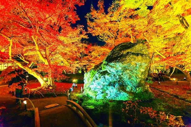 光の中に浮かぶ巨岩の数々に注目