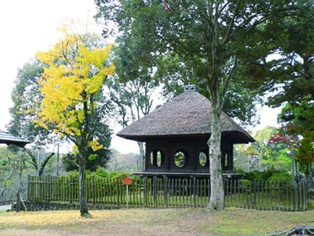 【写真】東屋と紅葉の風情ある景観を楽しめる浮見堂