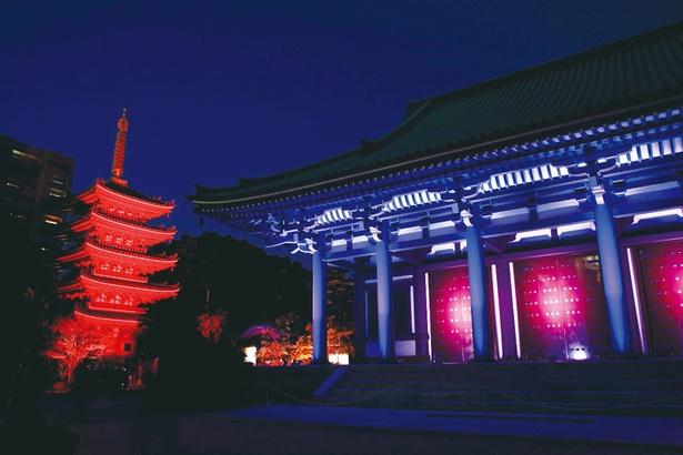 【写真を見る】博多旧市街ライトアップウォーク2019 千年煌夜 / ライトアップされた寺社は日中とは違った魅力が※写真は過去開催時のもの