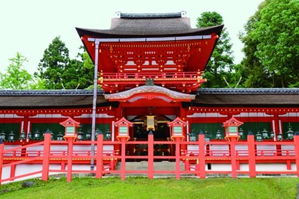 【写真】正面の唐破風が美しい、イチョウのバックを飾る朱色の中門