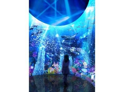 新感覚の深海体験を楽しもう