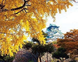大阪城公園の絶景紅葉スポット!大阪屈指の名所で秋景色を楽しもう