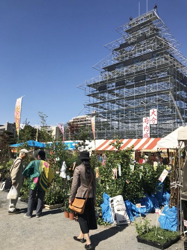 第4回 おおいた食と暮らしの祭典 / 植木造園展などイベント満載! ※写真は過去開催時の様子