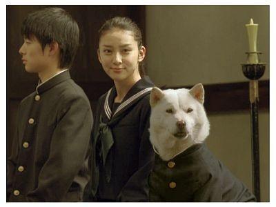 【写真】現役女子高生女優・武井咲のセーラー服姿も