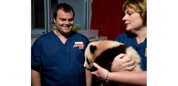 赤ちゃんパンダのポーと対面したジャック・ブラックは緊張気味