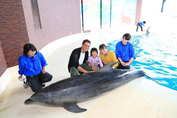 イルカに触れる貴重な体験にみなニッコリ。イルカタッチは、1日4組(5名以内)限定。ペンギンタッチとエサやりは、1日5組(※5名以内)限定