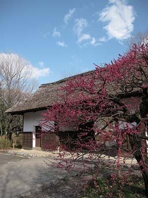 「府中市郷土の森博物館」
