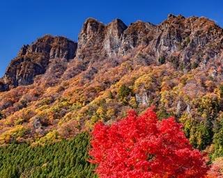 東京近郊で出会える奇跡の絶景紅葉!「妙義山」でダイナミックな紅葉を鑑賞