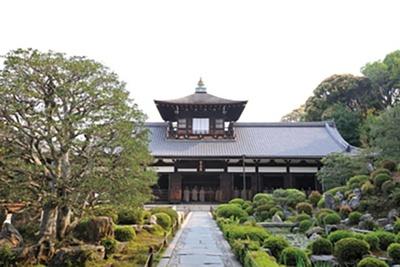 枯山水と池泉式を兼備した華麗な庭園が設けられる普門院