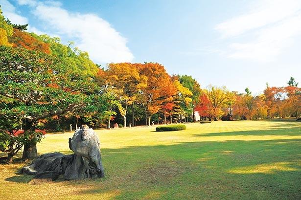 【写真】赤や黄色など、さまざまに色付いた紅葉と庭園の見事な共演