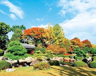 京都・二条城の絶景紅葉スポット!3つの庭園で色とりどりの紅葉を愛でよう