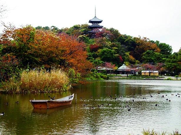 歴史的建造物を彩る紅葉