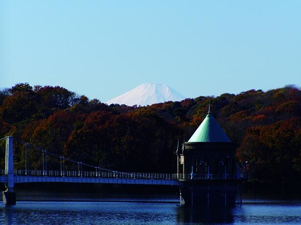 水面の背景に色づく紅葉が絵画的
