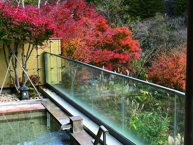 【写真】「信玄の隠し湯」として知られる露天風呂から紅葉を一望