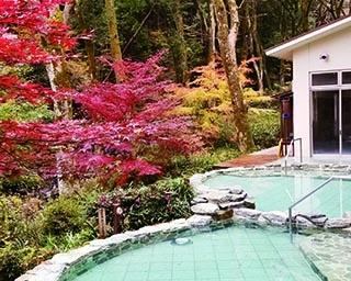 神奈川で紅葉が楽しめる温泉スポット3選!名湯と秋の風物詩を一度に堪能