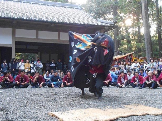 【写真を見る】伝統の獅子舞を見に行こう