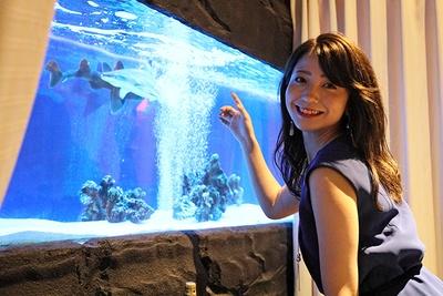 水槽で泳ぐサメに興味津々