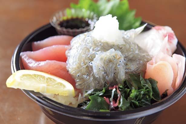 特製ポン酢をかけて食べる生しらす丼(900円、12月1日まで)/おさかな共和国 えびす丸