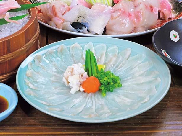 「てっさ(刺身)」(3300円、10月1日~3月末)。フグ料理のなかでも人気が高い刺身/あのりふぐ料理 まるせい