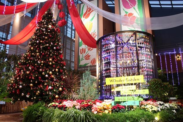 クリスマス一色に彩られる