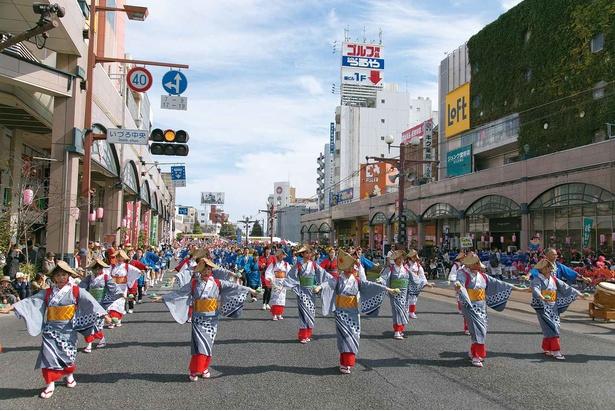 総勢2万人を超える踊り手が南九州随一の繁華街「天文館」一帯を練り踊る