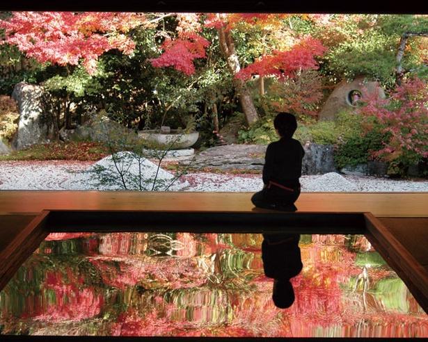 「逆さ紅葉」は写真映え抜群 / 栄久山 寿福寺