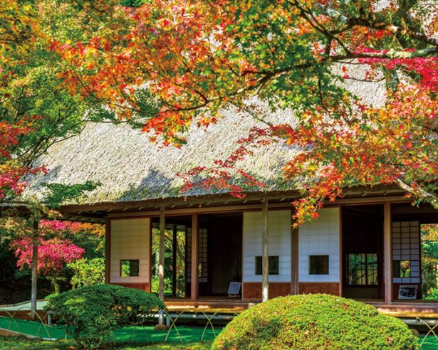 【写真を見る】九州屈指の紅葉の名所 / 九年庵