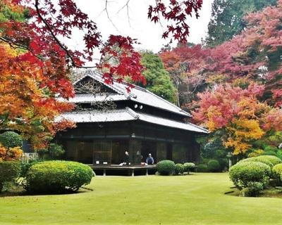 優美さが漂う名家の庭 / 麻生大浦荘