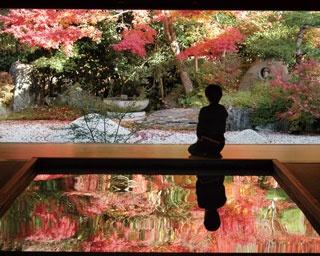 九州の各所で秋を体感!期間限定の紅葉庭園4選
