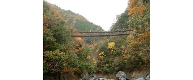 2つある親子橋を渡り眺める紅葉 / 五家荘(樅木の吊橋)