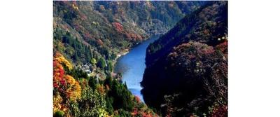 秋色に染まる九州のグランドキャニオン / 蘇陽峡