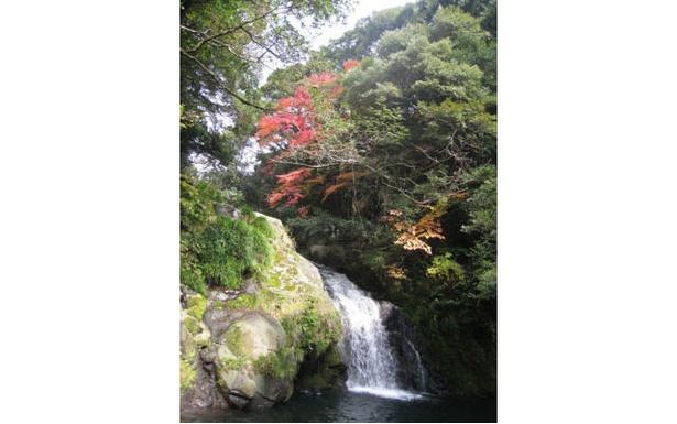 【写真を見る】轟峡 / 太龍の滝に色づくモミジやカエデが映える 画像提供:諫早市商工観光課