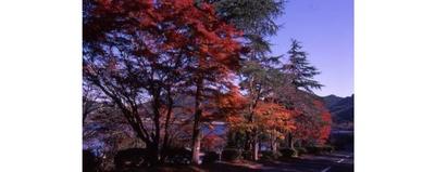 藺牟田池県立自然公園 / 初心者でも気軽に登山ができるコースもある