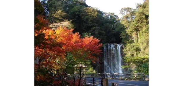【写真を見る】霧島(霧島温泉郷) / 滝と紅葉が合わさり、一層趣のある風景に