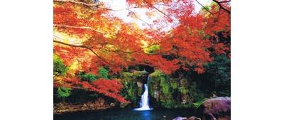 観音滝公園 / おとぎ橋から鮮やかに色づいた木々を眺めながら散策を