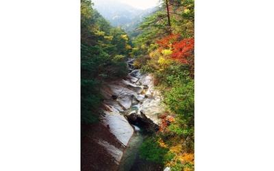 大自然のアートと紅葉のコントラスト / 藤河内渓谷