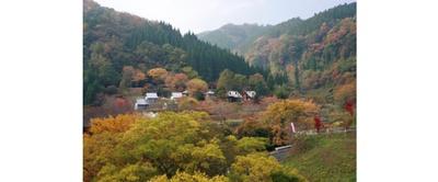 ダイナミックな渓谷と鮮やかな紅葉がマッチ / 陽目渓谷