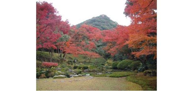 自然豊かな風景が色付く庭園 / 清水寺本坊庭園