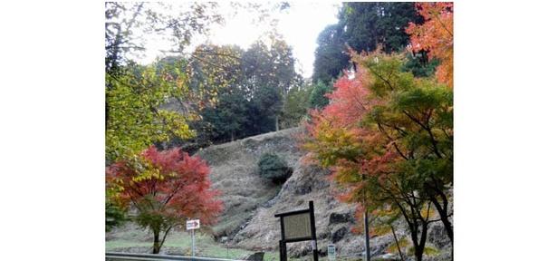 色鮮やかな木々と古代山城のコントラスト / 福岡県立四王寺県民の森