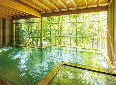優彩 / 半露天風呂「樹彩の湯」
