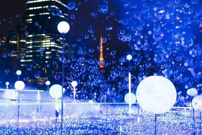 【写真】東京都心で実施されるイルミネーションの代表格