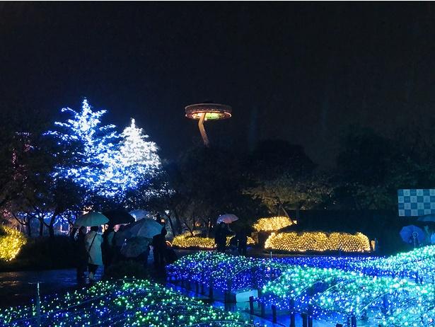 移動式展望台「アイランド富士」から、光に彩られる園内を一望