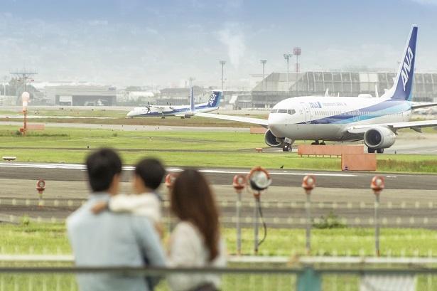 千里川土手と大阪(伊丹)空港は60メートルほどの距離。5月の連休中は土手には菜の花が咲くという