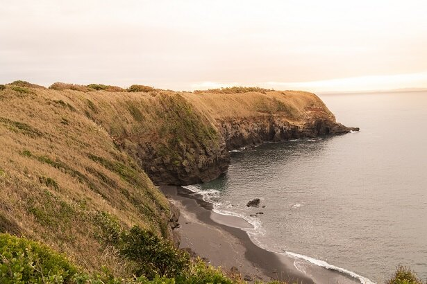 「ウミウ展望台」からの眺め。赤羽海岸東側の崖を望み、鳥たちが遊ぶ
