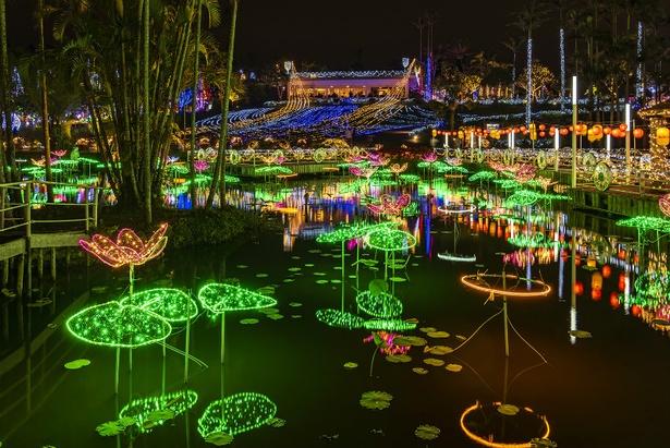 東南植物楽園「ひかりの散歩道」(沖縄県沖縄市)