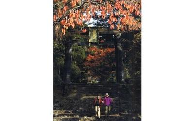 日本屈指の霊山で紅葉と神々に癒される / 英彦山