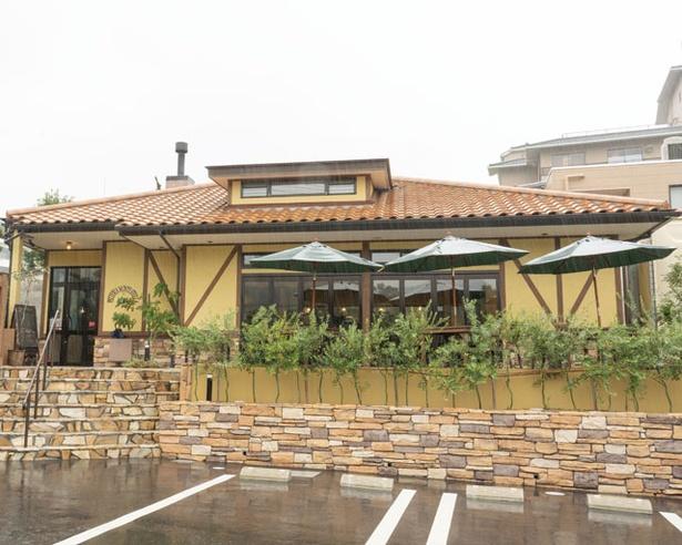 石窯を使った料理を多数提供する / PIZZERIA  MONTE STELLA
