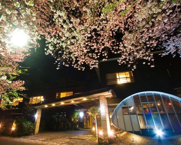 創業90年以上の老舗旅館 / 旅館 吉田屋